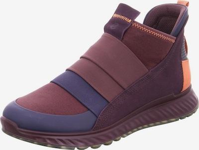 ECCO Sneaker in rotviolett, Produktansicht