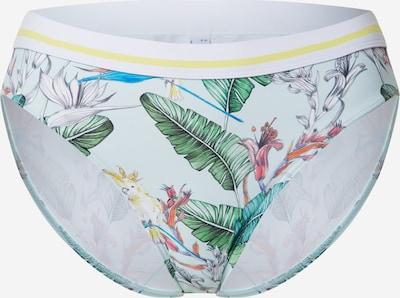 ESPRIT Dół bikini 'Lilian' w kolorze jasnoniebieski / zielonym, Podgląd produktu