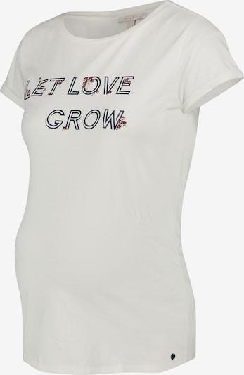 Esprit Maternity T-shirt in rot / schwarz / offwhite, Produktansicht