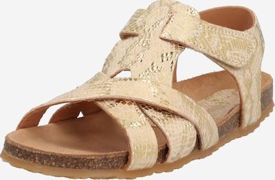BISGAARD Sandale in beige / gold, Produktansicht