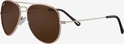 ZIPPO Sonnenbrille 'Brown polarized Gold Pilot' in braun / gold, Produktansicht