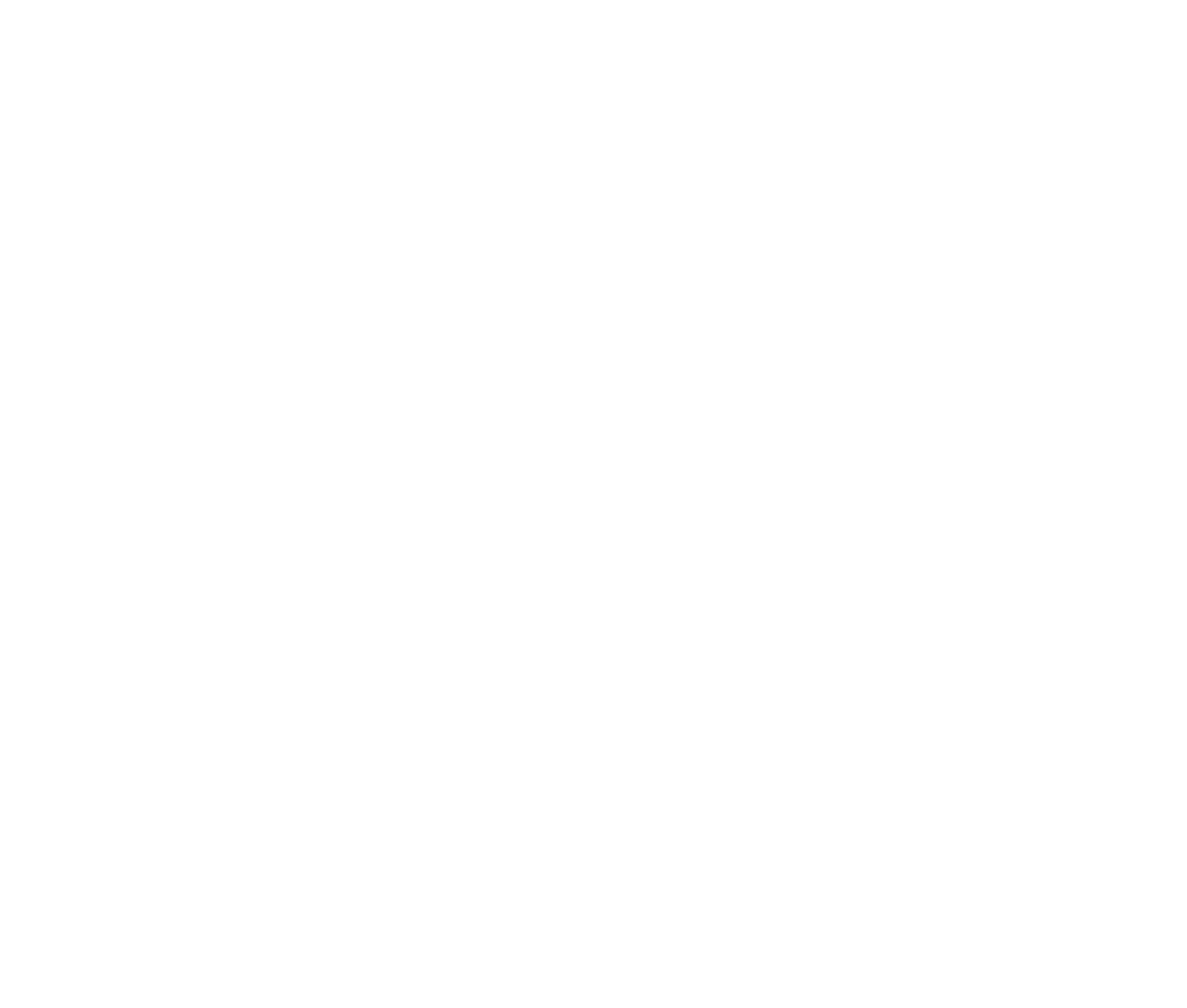 E9 Logo