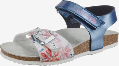 GEOX Kids Sandale 'Adriel' in blau / rosa / silber / weiß, Produktansicht