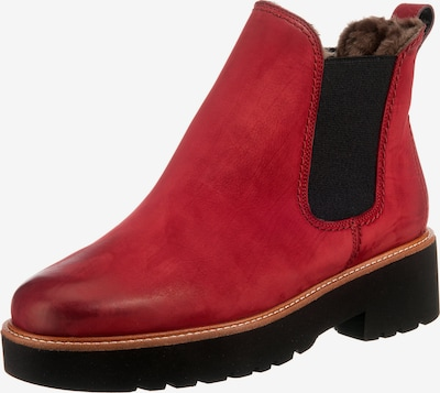 Paul Green Stiefelette in rot: Frontalansicht