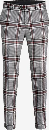 JACK & JONES Hose in rot / schwarz / weiß, Produktansicht
