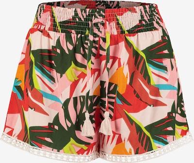 Shiwi Broek 'frangipani' in de kleur Gemengde kleuren, Productweergave