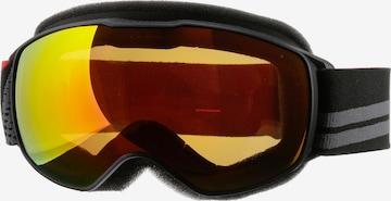 Julbo Skibrille in Schwarz