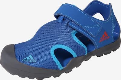 ADIDAS PERFORMANCE Sandale 'Captain Toey K' in blau / hellblau / rot / schwarz, Produktansicht