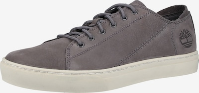 TIMBERLAND Sneaker in taupe: Frontalansicht