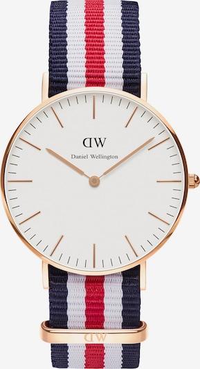 Daniel Wellington Uhr in dunkelblau / gold / rot / weiß, Produktansicht