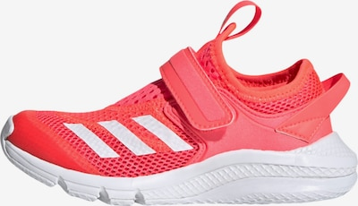 ADIDAS PERFORMANCE Sportschuh in orange / weiß, Produktansicht