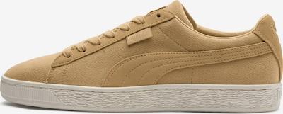 PUMA Sneaker 'Basket Classic Cocoon' in sand, Produktansicht