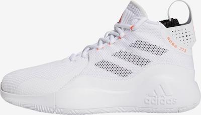 ADIDAS PERFORMANCE Schuh  'D Rose 773 2020' in weiß, Produktansicht