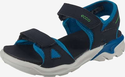 ECCO Sandale  'Biom Raft' in dunkelblau, Produktansicht