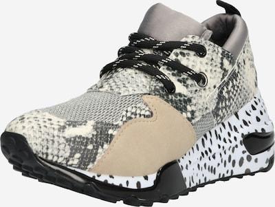 STEVE MADDEN Sneaker in beige: Frontalansicht
