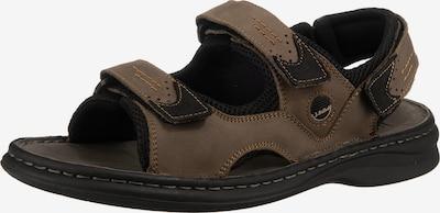 JOSEF SEIBEL Hiking Sandals 'Franklin' in Dark brown / Black, Item view