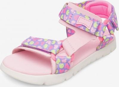 CAMPER Open schoenen 'Oruga' in de kleur Lila / Gemengde kleuren / Pink, Productweergave