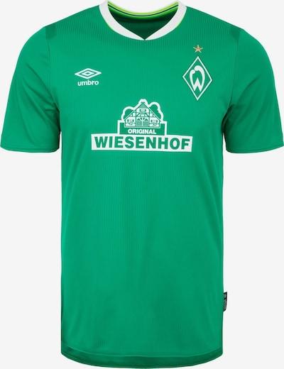 UMBRO Trikot 'SV Werder Bremen' in grün / weiß, Produktansicht