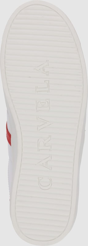 Carvela by by Carvela Kurt Geiger Sneaker 'LISA' 50b602