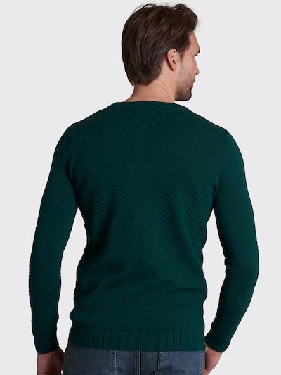 Shiwi Sweter 'Nymbro' w kolorze ciemnozielonym: Widok od tyłu