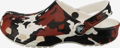 Crocs Clogs in braun / schwarz / weiß, Produktansicht