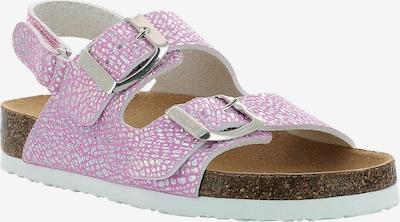 SCHOLL Sandale in rosa, Produktansicht