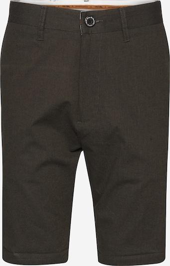Iriedaily Shorts 'Golfer Chambray' in oliv, Produktansicht