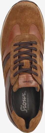 SIOUX Sneakers laag 'Rojaro-706' in Bruin 5p4nX1Iz