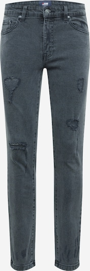 Denim Project Jeans 'MR. RED' in Grey denim, Item view