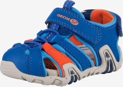 GEOX Sandalen 'Kraze' in blau / koralle, Produktansicht