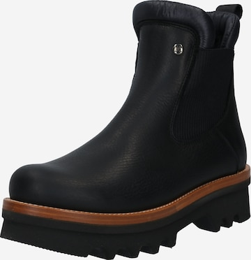 PANAMA JACK Chelsea Boots 'Macao' in Black
