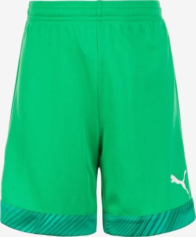 PUMA Short 'Cup' in grün, Produktansicht