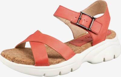 CAMEL ACTIVE Sandale 'Vision' in rot, Produktansicht
