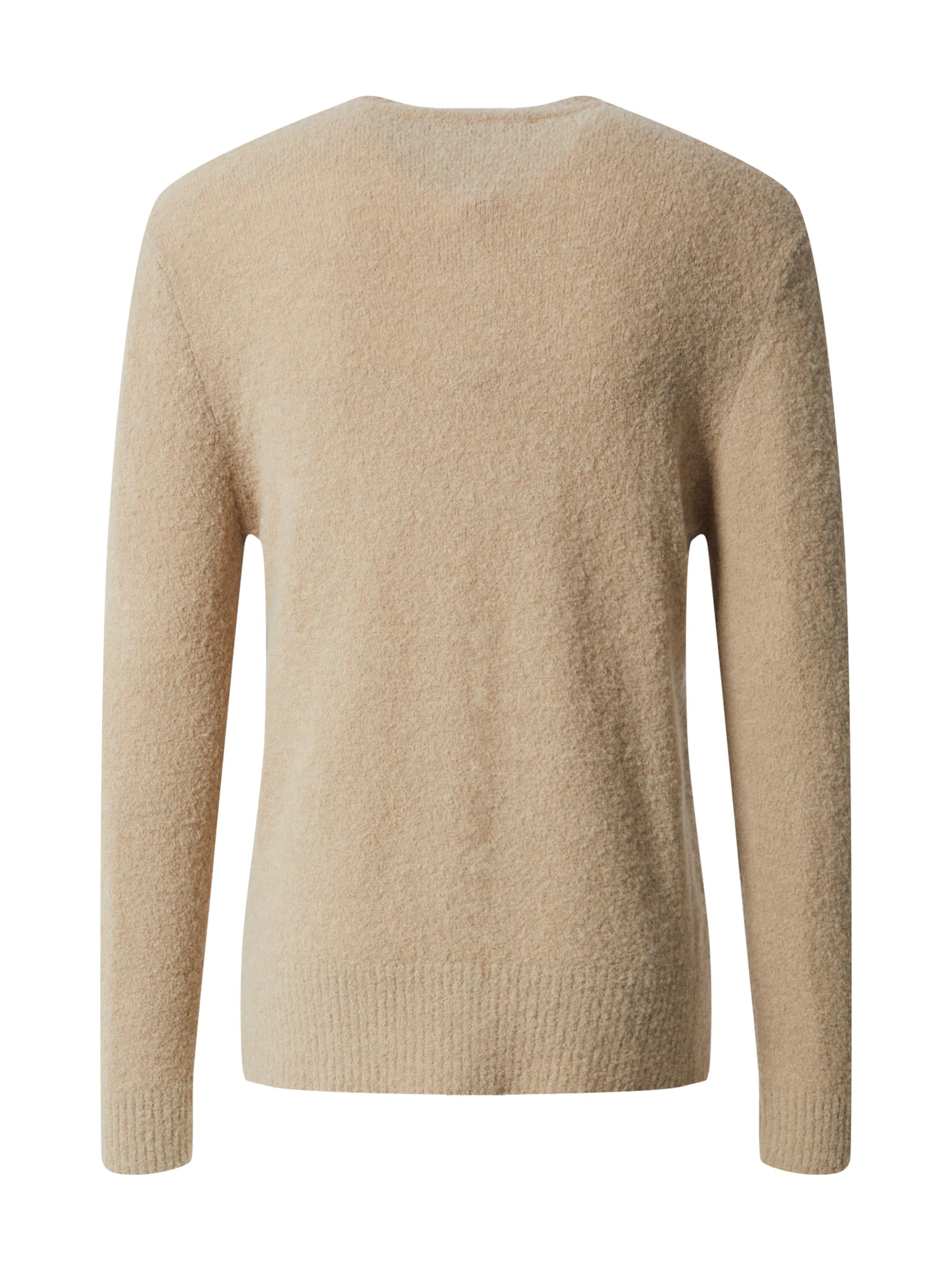 DRYKORN Pullover 'VINCENT' in beige Unifarben Dry1439001000001