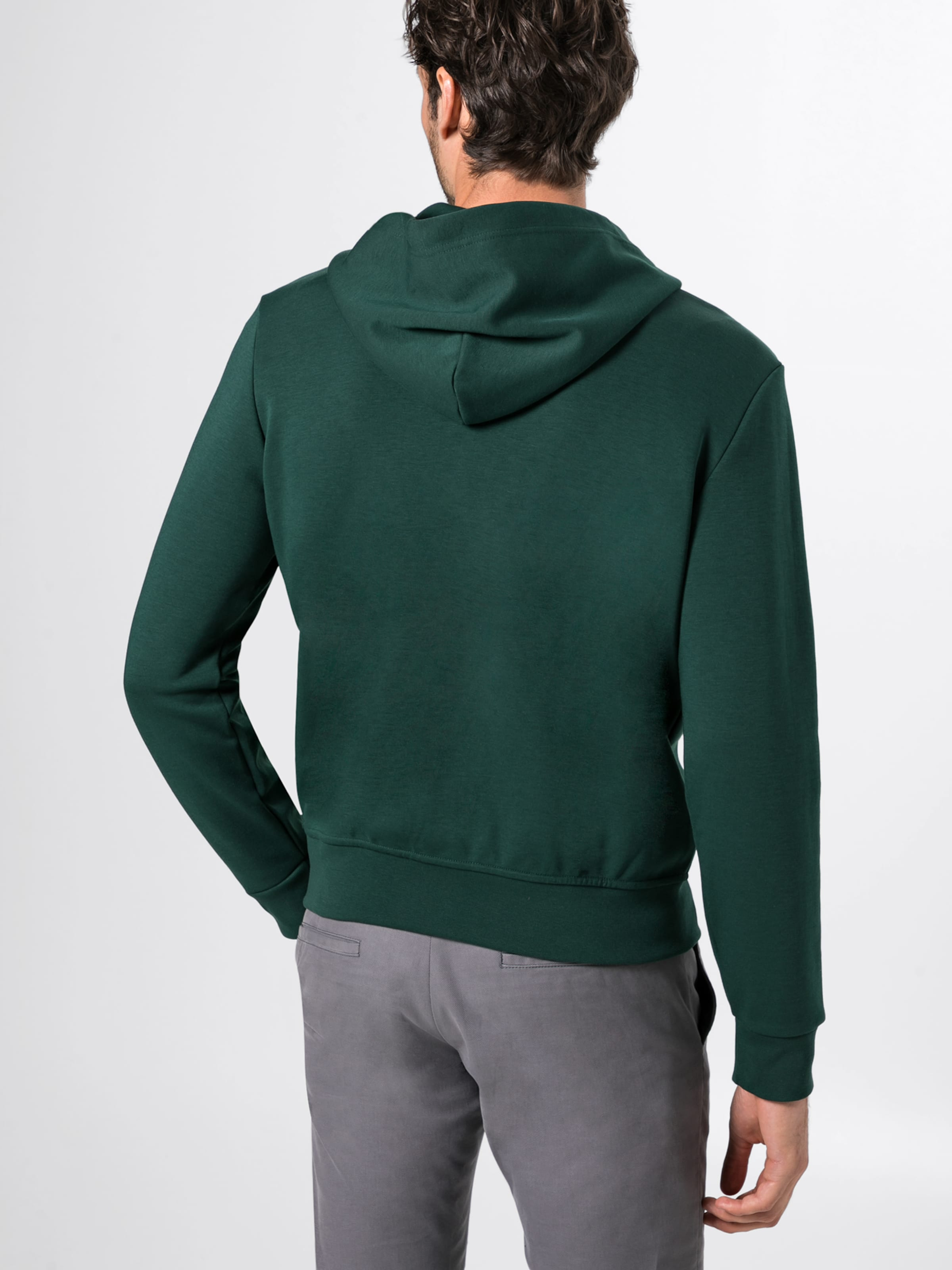 'lsfzhoodm1 Polo In long knit' Dunkelgrün Ralph Lauren Sweatjacke Sleeve QCxBhotsrd