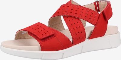 Legero Sandales à lanières en rouge, Vue avec produit