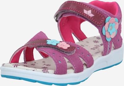 LICO Sandalen in hellblau / pink / dunkelrot, Produktansicht
