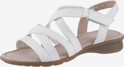GABOR Sandalen met riem in de kleur Wit, Productweergave