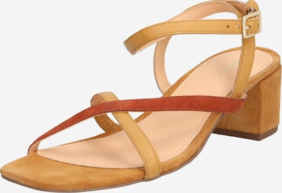 ABOUT YOU Strap sandal 'Elisa' in Brown, Item view