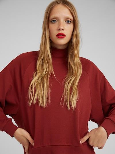 EDITED Sweatshirt 'Nana' in braun, Modelansicht