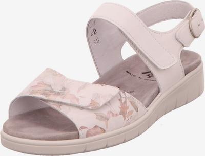 SEMLER Sandale in pastellpink: Frontalansicht