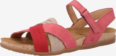 EL NATURALISTA Sandalen met riem in de kleur Beige / Pink / Rood, Productweergave