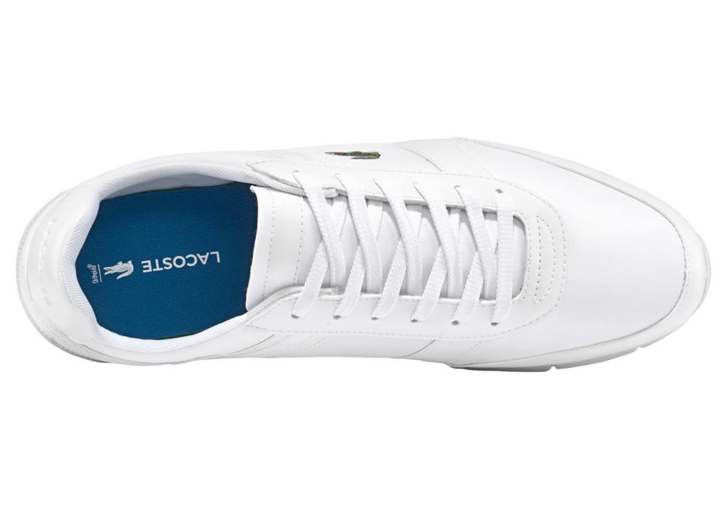 'menerva Weiß Sport' Sneakers In Lacoste PkXuOiZ