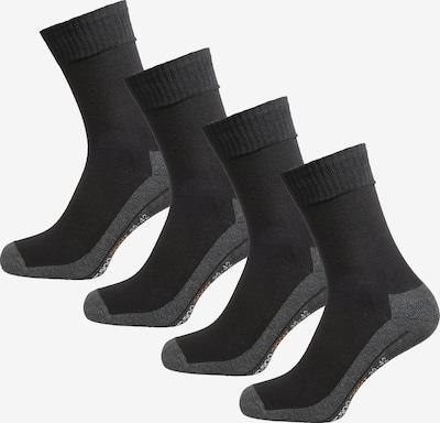 camano Sportsocken in dunkelgrau / hellorange / schwarz / weiß, Produktansicht
