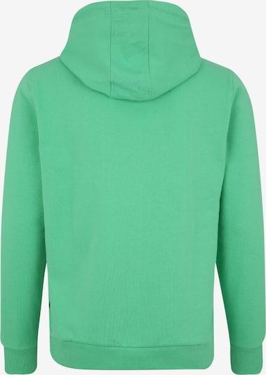 Sportinio tipo megztinis iš CHIEMSEE , spalva - žalia: Vaizdas iš galinės pusės