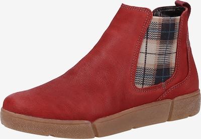 ARA Stiefelette in beige / blau / rot: Frontalansicht