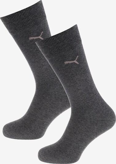 PUMA Socken in grau: Frontalansicht