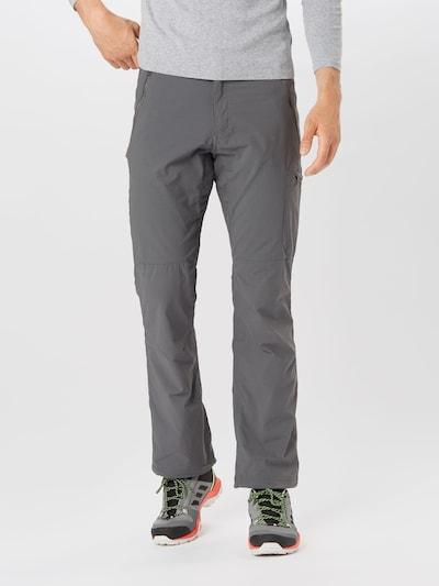 CRAGHOPPERS Pantalon de sport 'Pro Trs' en gris, Vue avec modèle