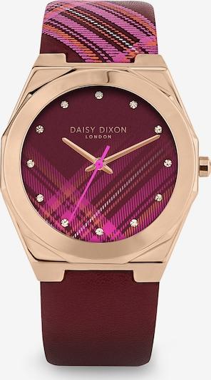 DAISY DIXON Uhr in rosegold / beere / fuchsia, Produktansicht