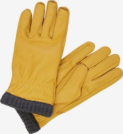 JACK & JONES Vingerhandschoenen in de kleur Geel / Donkergrijs, Productweergave